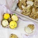 Biscotti al tè matcha - pulcini decorati
